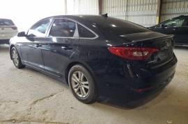Hyundai, Sonata